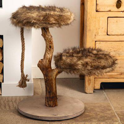 Designed by Lotte Kratzmöbel Aviva 50x50x68 cm Holz