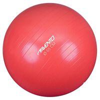 Avento Fitness-/Gymnastikball Durchm. 65 cm Rosa