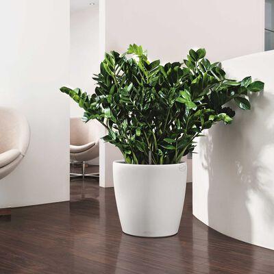 LECHUZA Blumentopf Classico Color 28 Komplett-Set Hochglanz Weiß 13190