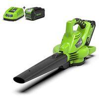 Greenworks Hand-Laubbläser 40 V Grün