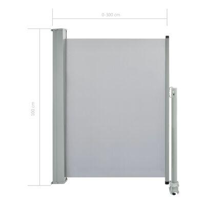 vidaXL Ausziehbare Seitenmarkise 100 x 300 cm Grau