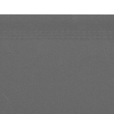 vidaXL Ausziehbare Seitenmarkise 160x600 cm Grau