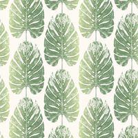 Evergreen Tapete Monstera Leaves Weiß und Grün